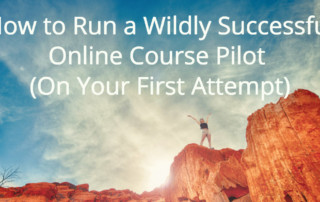 wildly-successful-pilot