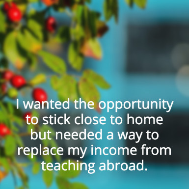 replace-teaching-income